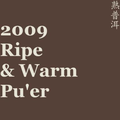 2009 Ripe & Warm Pu'er